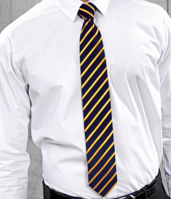 PR784  Premier Sports Stripe Tie